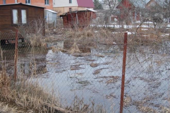 поверхностные воды на дачном участке