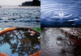 Польза и вред дождевой воды для человека