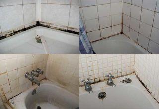 Лучшие способы борьбы с плесенью в ванной комнате